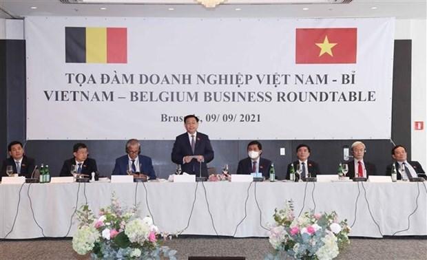 越南国会主席王廷惠会见欧洲各大集团代表 hinh anh 4