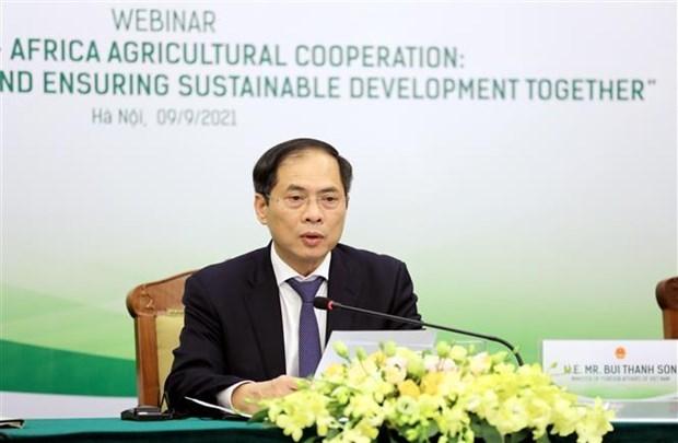 越南与非洲农业合作:加强沟通对接 共促可持续发展 hinh anh 1