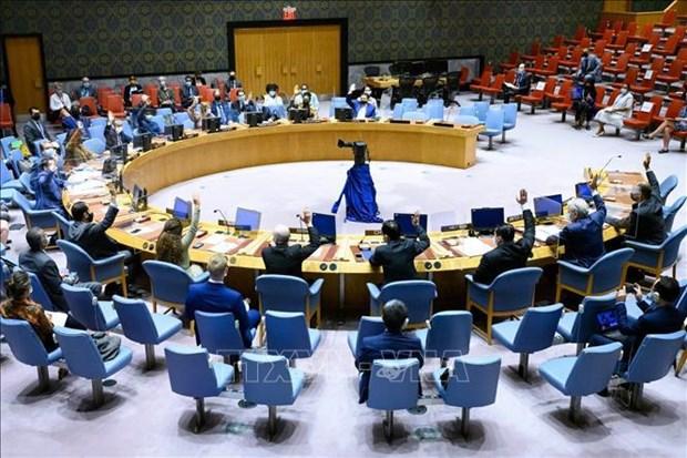 越南与联合国安理会:非法贸易小型枪支和轻武器危害国际和平与安全 hinh anh 1