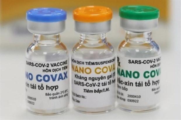 尽快完善新冠疫苗许可审批流程和防疫药物生产工作 hinh anh 1