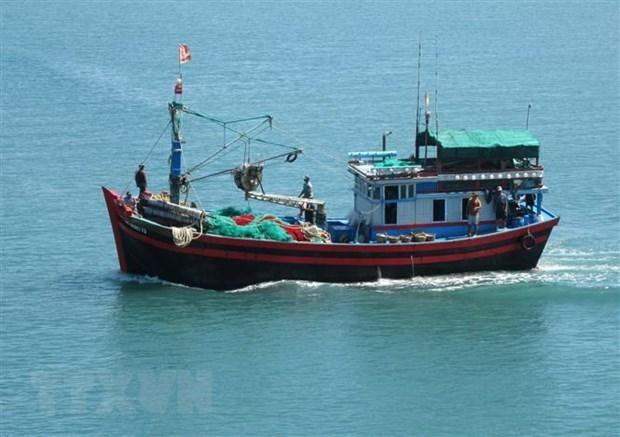 解除IUU黄牌警告:槟椥省98.8%的船舶已安装巡航监控设备 hinh anh 1
