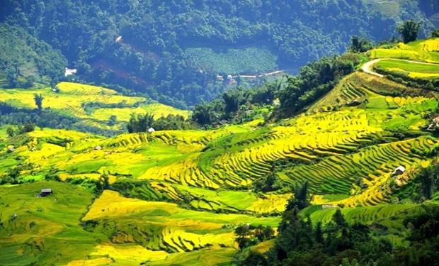 越南海拔最高的村庄 hinh anh 1