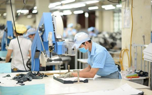 雀巢公司领导:越南展现出强劲吸引力 hinh anh 1