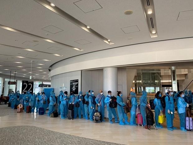 越南将在新加坡的300名公民接回国 hinh anh 2