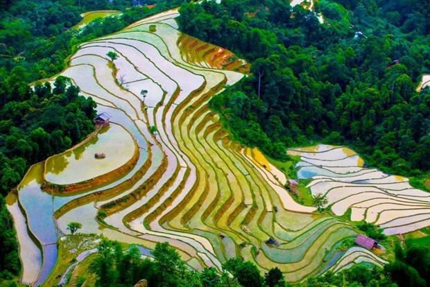木江界注水季节:西北山林的壁画 hinh anh 1