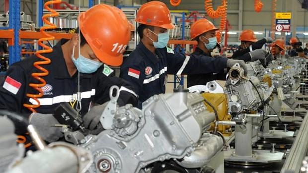 印尼2500万名劳动者正在寻找就业机会 hinh anh 2