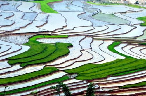 木江界注水季节:西北山林的壁画 hinh anh 2