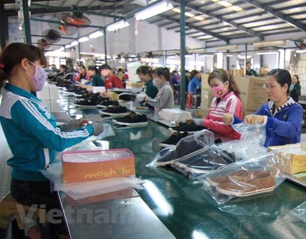 今年前7个月越南鞋类出口总额约达95.3亿美元 hinh anh 2
