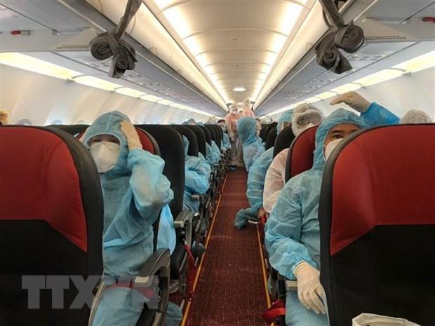 越南将在日本的350名公民接回国 hinh anh 2
