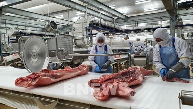 Masan集团在隆安省冷鲜肉加工厂即将投入运行 hinh anh 2