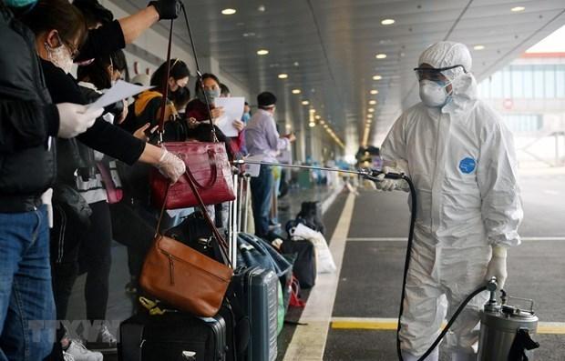 越南无新增新冠肺炎确诊病例 累计确诊病例1160例 hinh anh 2