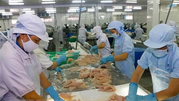 波兰市场为越南水产品敞开大门 hinh anh 2