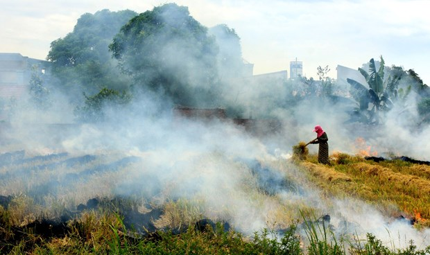 越南注重实现国家自主决定贡献方案 到2030年将温室气体排放量减少9% hinh anh 2