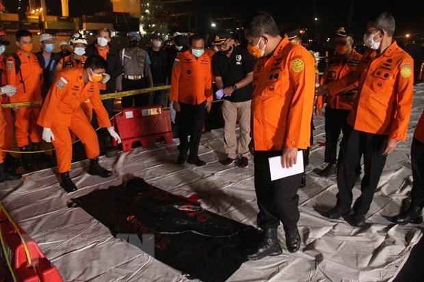 载有53名旅客和12名机组人员的印尼客机坠毁 hinh anh 1