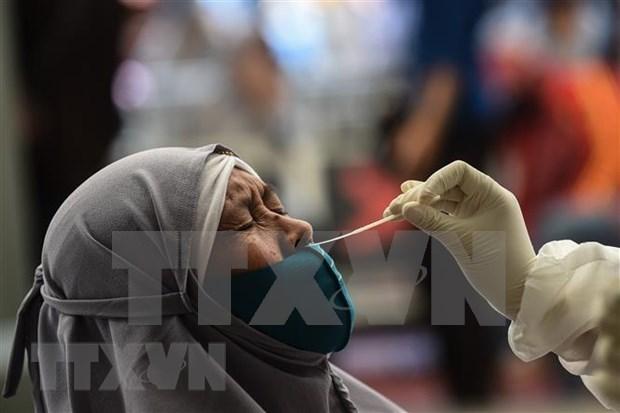 新冠肺炎疫情:印度尼西亚新增死亡病例创有史以来新高 hinh anh 1