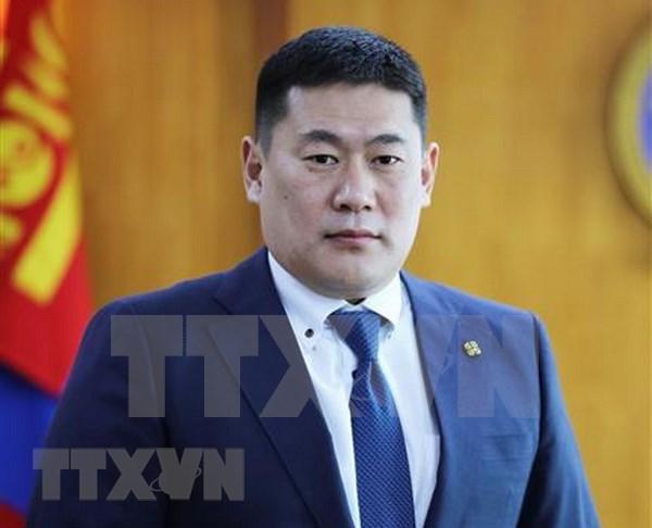 越南政府总理阮春福向蒙古国新任总理致贺电 hinh anh 1