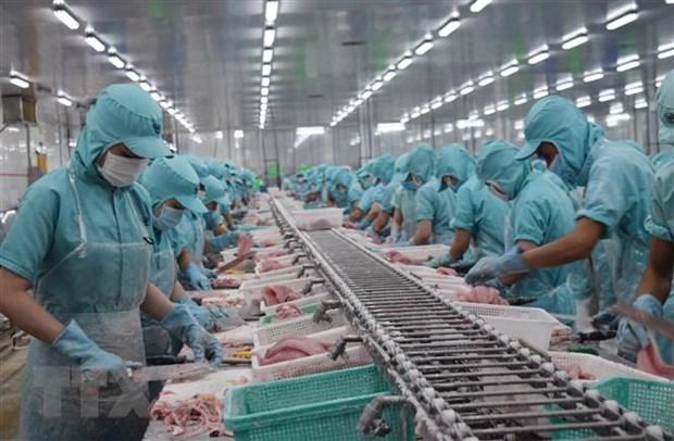 越南SPS办公室对巴西水产品进口规定表示担忧 hinh anh 1