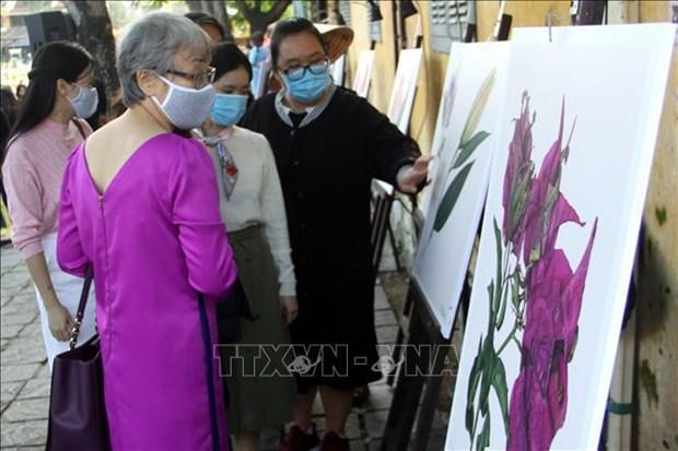 哥伦比亚风土人情图片展在广南省开幕 hinh anh 2