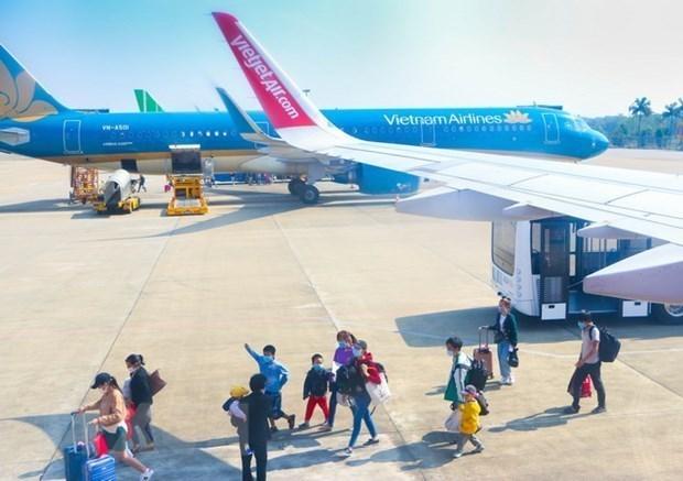 2021年1月越南接待国际游客量环比增长9% hinh anh 1