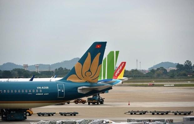 越南交通运输部暂停至广宁省的所有往返航班 hinh anh 1