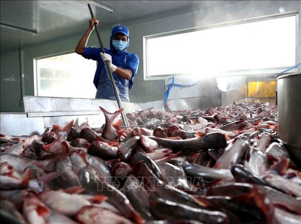 越南努力化解企业向柬埔寨出口水产品遇到的困难 hinh anh 1