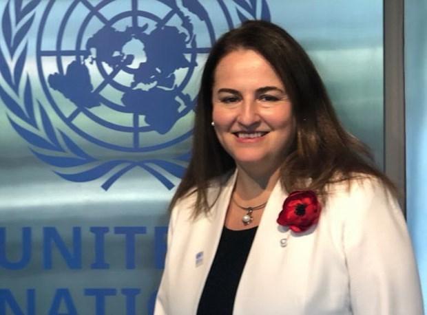 联合国妇女发展署驻越代表处首席代表:共同分担家务 一起过一个温馨的春节 hinh anh 1