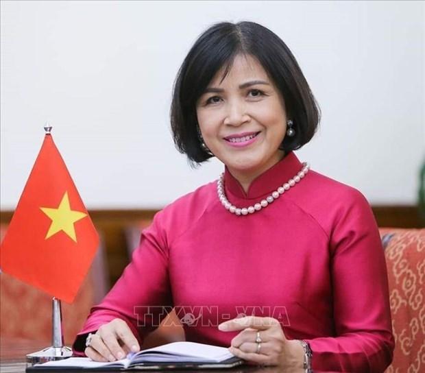 越南出席世贸组织对缅甸第二次贸易政策审议 hinh anh 1