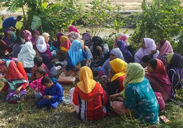 马来西亚仍然将千多名缅甸人驱逐出境 hinh anh 1