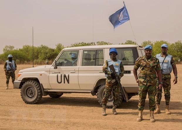 越南与联合国安理会:越南呼吁促进南苏丹过渡进程 hinh anh 1