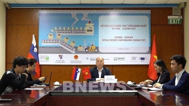 越南与斯洛文尼亚促进机械领域中的合作 hinh anh 1
