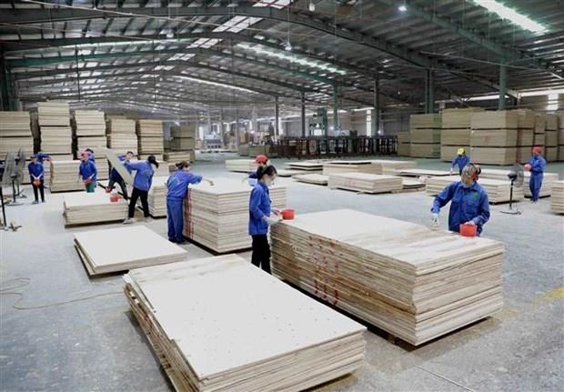 期望越南将成为全球木材供应链 hinh anh 1