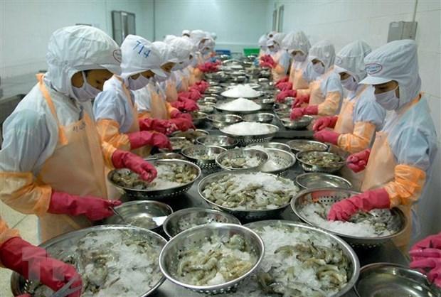 力争至2045年越南跻身世界三大水产品出口国名单 hinh anh 1