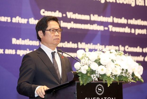 CPTPP协定:为越南与加拿大贸易多样性提供有力支撑 hinh anh 3