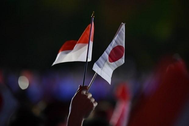 日本和印尼加强防务合作 hinh anh 1
