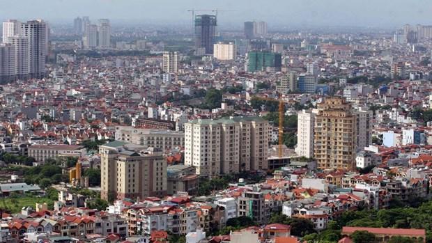 河内市组织开展城市政府模式 hinh anh 1