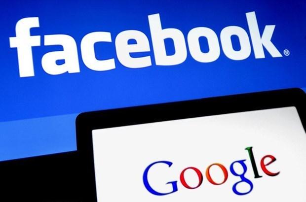 脸书和谷歌计划改善美国与东南亚之间的互联网连接质量 hinh anh 1