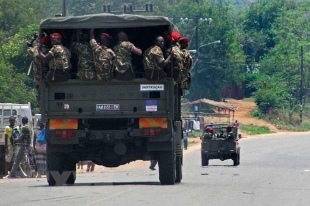 越南驻莫桑比克大使馆密切关注莫桑比克北部形势 hinh anh 1