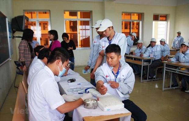 在韩越南劳工居留期限可延长一年 hinh anh 1