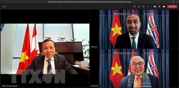 越南与加拿大促进各地方之间经济合作关系 hinh anh 1