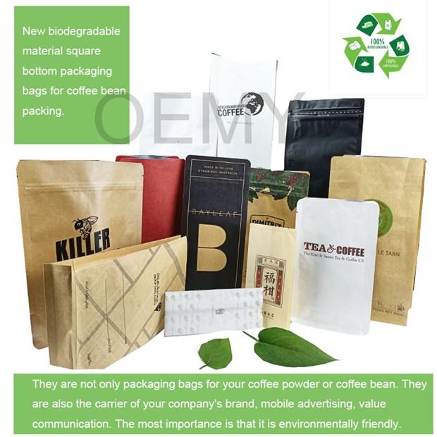 生物纸袋以安全耐用等优势代替塑料袋 hinh anh 1