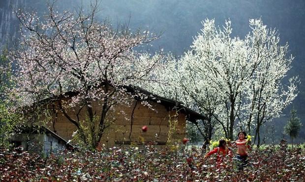 木州——体验游爱好者最爱的目的地 hinh anh 1