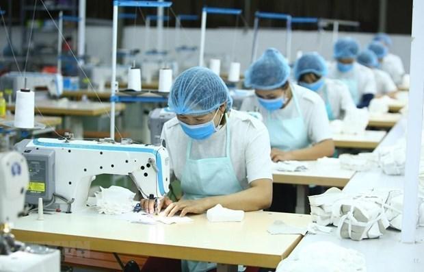 2021年第一季度非正规就业女工比率猛增 hinh anh 1