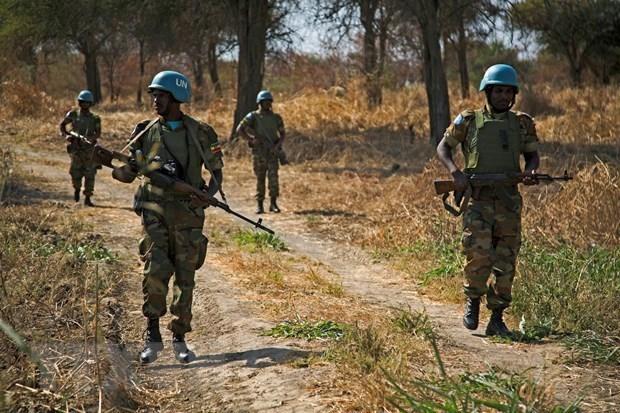 越南与联合国:越南呼吁通过和平方式解决阿卜耶伊问题 hinh anh 1
