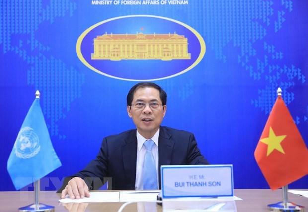 越南与联合国安理会:促进多边合作以便解决公共事务 hinh anh 1