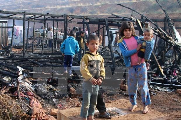 越南与联合国安理会:越南呼吁在新冠肺炎疫情的背景下加强保护冲突中的儿童 hinh anh 1