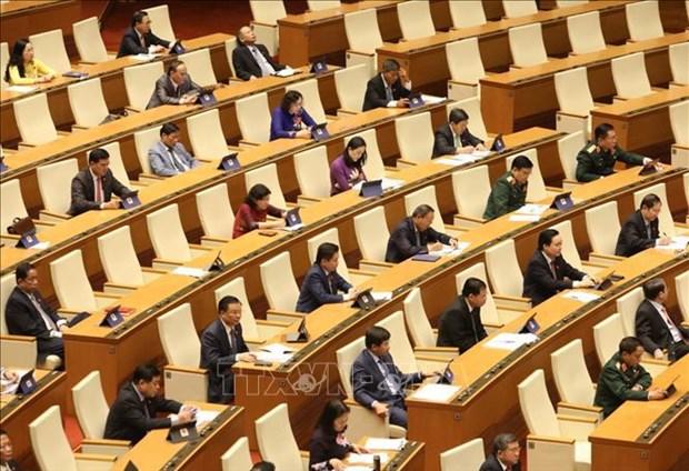 国会主席王廷惠:国会代表是国会活动中的核心 hinh anh 2
