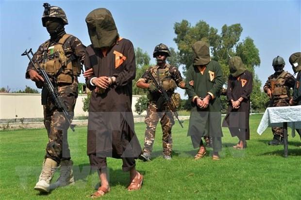 越南的与联合国安理会:越南支持联合国调查追究伊黎伊斯兰国在伊拉克的罪行 hinh anh 1