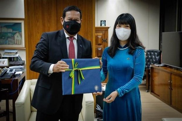 越南大使向苏里南外交部长移交委任状 hinh anh 1