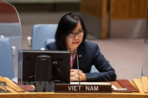 越南与联合国安理会:越南敦促有关各方进行对话 解决有关Safer号油轮的分歧 hinh anh 1