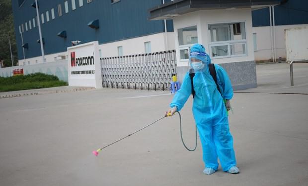6月4日上午越南新增52例本土新冠肺炎确诊病例 hinh anh 1